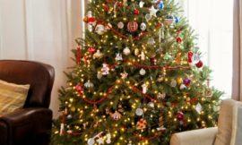 Traditions d'arbre de Noel